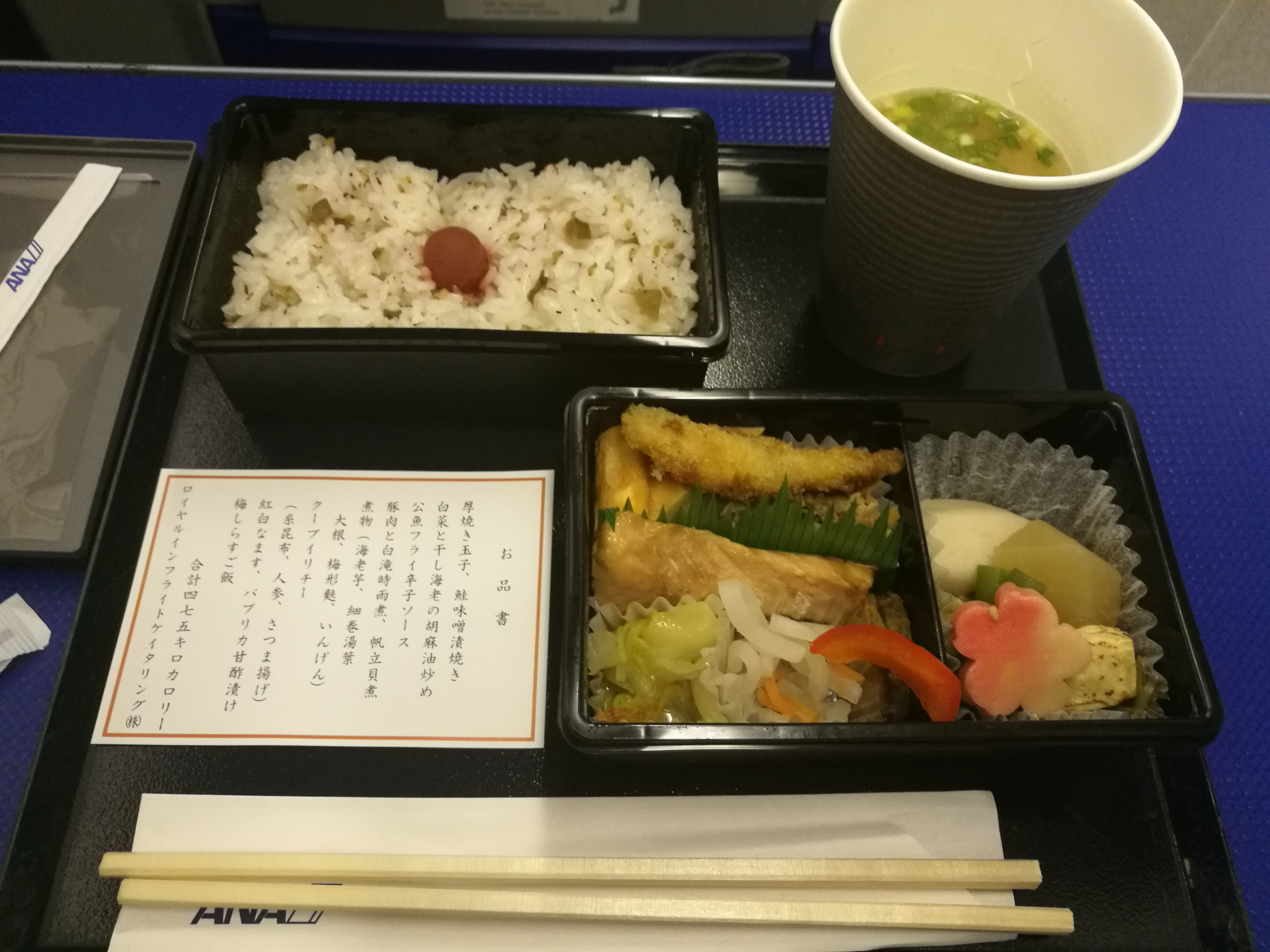 [ANA SFC修行]ANA 沖縄→東京・羽田便(NH683便)のプレミアムクラスを体感してみた
