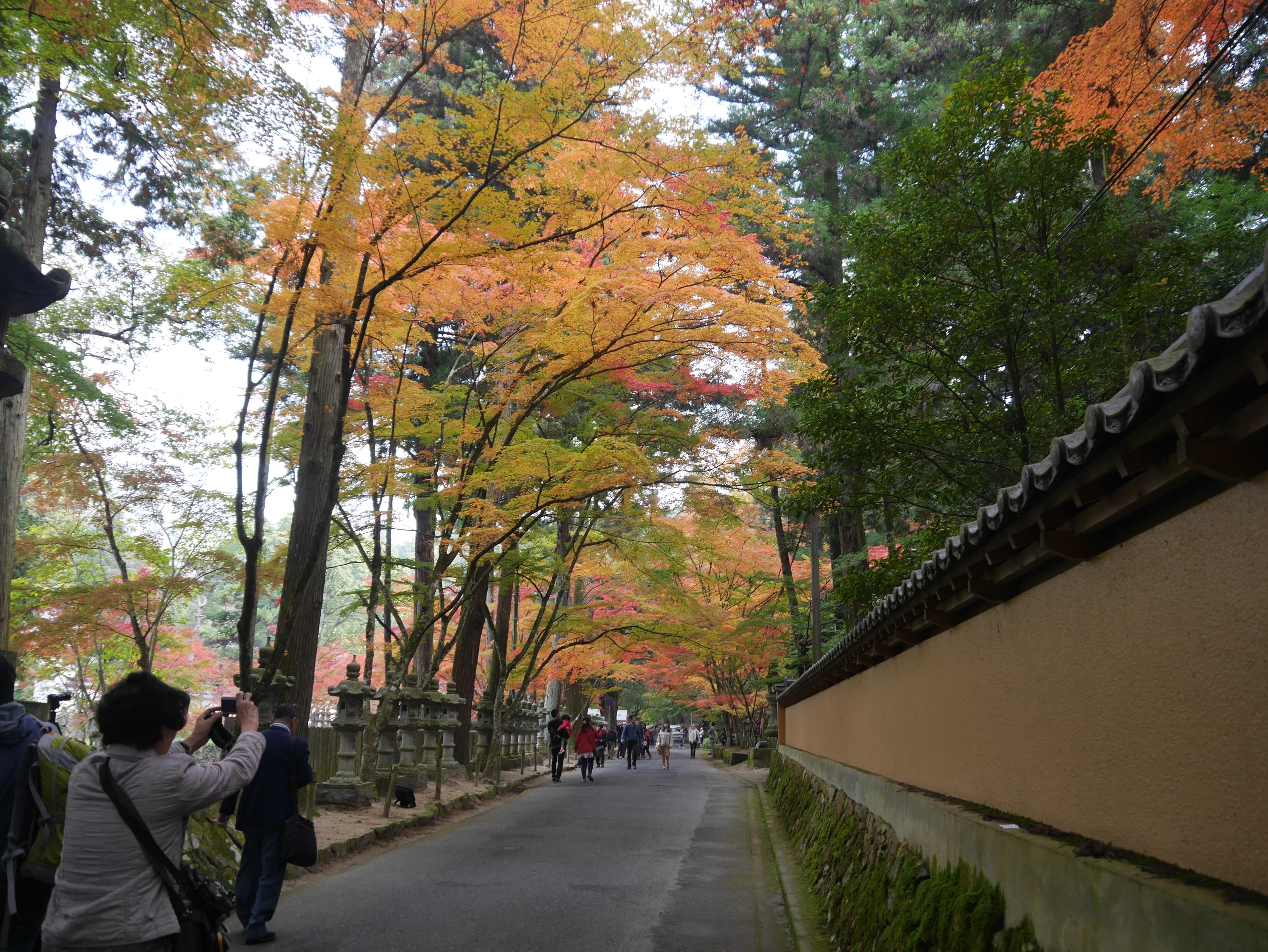 【Love 広島】紅葉が見事な、「佛通寺」(広島県三原市)